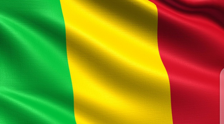 MALI : Liste nominative des membres du Conseil national de la transition